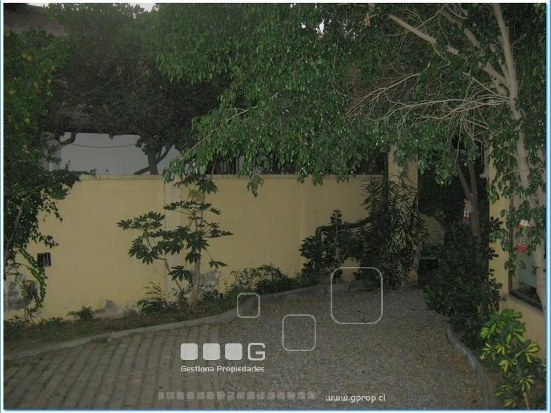 P4618 - P4618-65.jpg